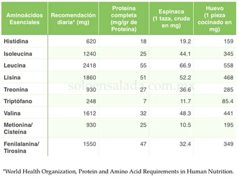q proteinas tiene el huevo 191 tiene m 225 s prote 237 na la espinaca que el huevo paperblog