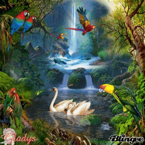 imagenes insolitas de nuestro mundo nuestro mundo magico g fotograf 237 a 121921835