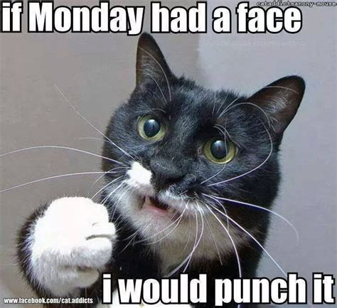 Monday Work Meme - if monday had a face i would punch it monday monday memes