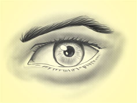 eye drawing how to draw a realistic eye 14 steps with pictures