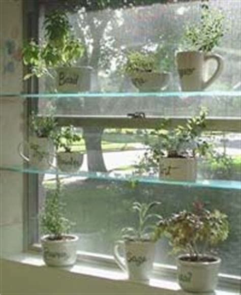 Kitchen Window Shelf For Herbs by 1000 Images About Window Herb Garden Inspiration On