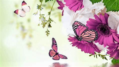 imagenes bonitas gratis para celular fondos de pantalla animados para celular en hd