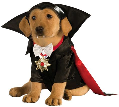 puppy costume for dracula costume costume craze