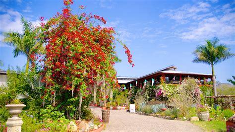 Vallarta Gardens by Vallarta Botanical Gardens In Vallarta