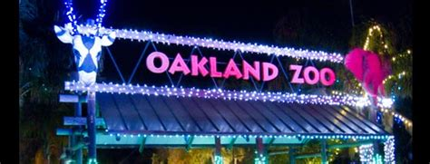 Oakland Zoo Lights 2018 Coupons Ticket Prices Dates Oakland Zoo Lights