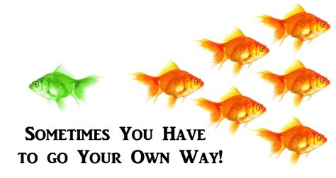 go your own way change your thoughts