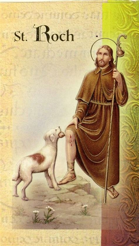 patron of dogs patron of dogs pictures