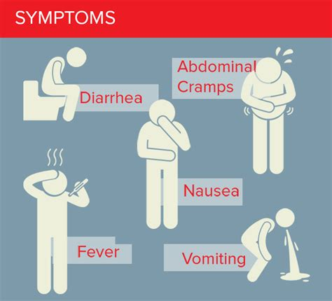 sick symptoms food borne illnesses what you need to debugged