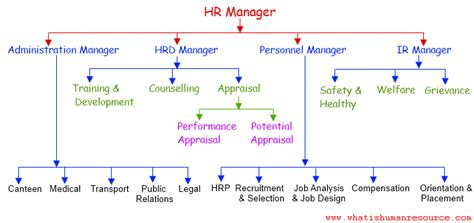Seminar Topics For Mba Hr by What Is Meant By Human Resources