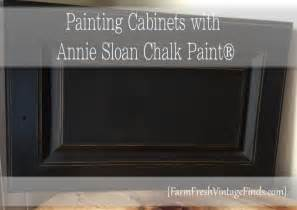 Painting Kitchen Cabinets With Annie Sloan Chalk Paint annie sloan chalk paint kitchen cabinets annie sloan coco
