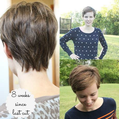 5 tricks to growing out a pixie cut stylecaster pixie cut growing out