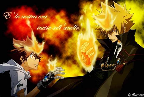 Katekyoushi Hitman Reborn! images tsuna HD wallpaper and