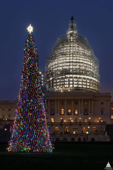 payette smokejumpers tasked with finding capitol christmas