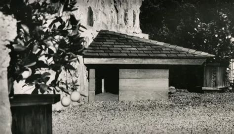 who tossed the dog in the house that jack built this is the only dog house frank lloyd wright ever designed