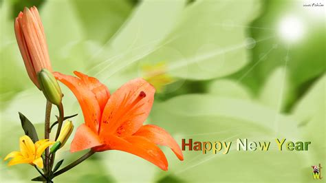 new year flowers occasions new year flower new year wallpapers yah in