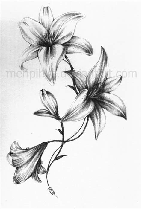lilies and roses tattoos black and white flowers design