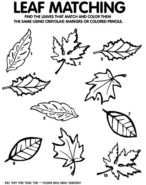 fall leaves printable activities there was an old lady who swallowed some leaves omazing kids