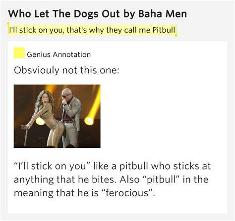 who let the dogs out lyrics i ll stick on you that s why they call me pitbull who let the dogs out lyrics meaning
