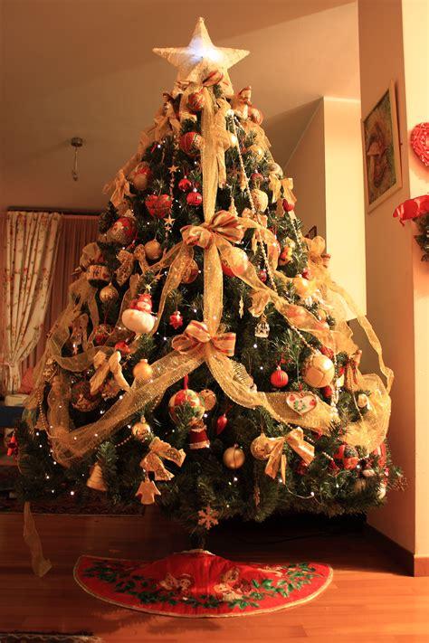 albero di natale in casa dicembre 2011 cidade de meu andar