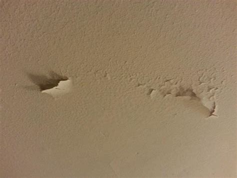 peeling bubbling paint on bathroom ceiling picture of