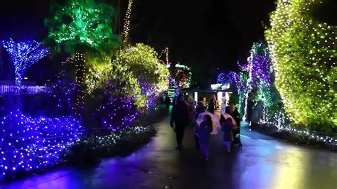 zoo light seattle seattle zoo lights decoratingspecial