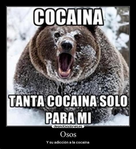 Meme Droga - im 225 genes y carteles de cocaina pag 28 desmotivaciones