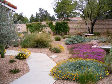Desert Landscape Ideas For Backyards Desert Landscape Ideas For Backyards Desert Landscaping Idea For Your Yard To Look More