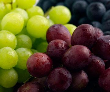 carbohydrates grapes 9 tasty and healthy snack ideas eatcleanhealth