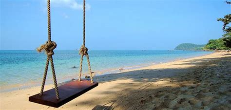 ocean swing happy ocean views and wooden swings on pinterest