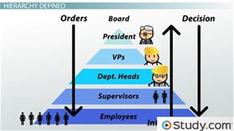 pattern of authority meaning organizational chart and hierarchy definition exles