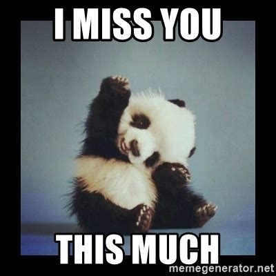 Miss U Meme - i miss you this much cute baby panda meme generator