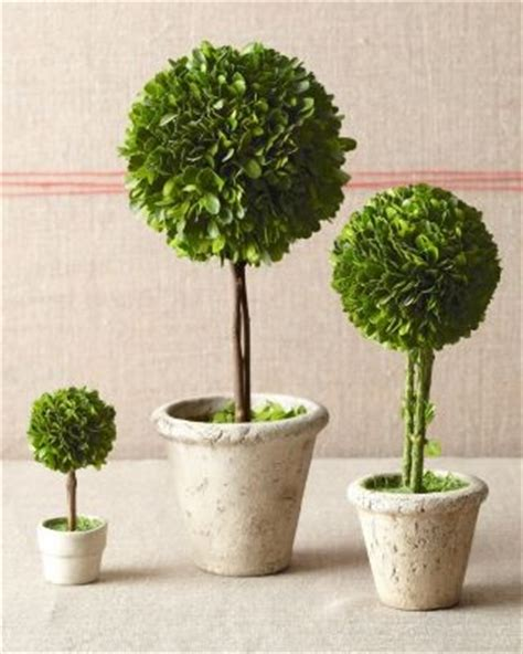 topiary trees topiary trees contemporary artificial flowers plants