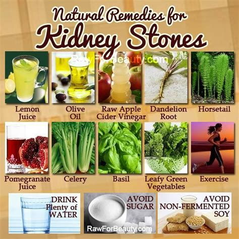 17 best images about kidney stones on kidney