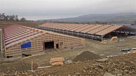 Broiler Shed by Expert Advice For Planning A Poultry Shed Farmers Weekly