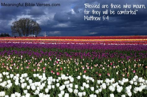 scriptures to comfort those who mourn meaningful bible verses blog