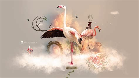 flamingo heaven wallpaper desktopography 2016