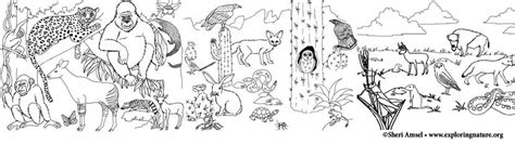 coloring pages of animals in their habitats habitat coloring pages