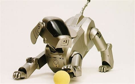 robot puppies robot dogs to replace s best friend telegraph