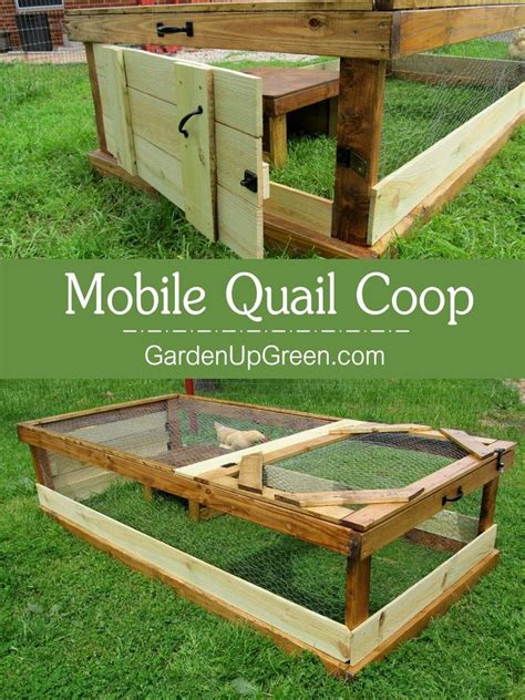 backyard quail coop 390 best images about quail on pinterest quails the