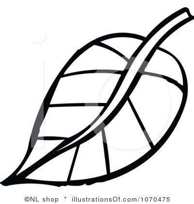 Anggur Hitam Autum foliage clipart apple leaf pencil and in color foliage