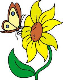 Buttercup Flower Pictures - flowers free clipart clipart best