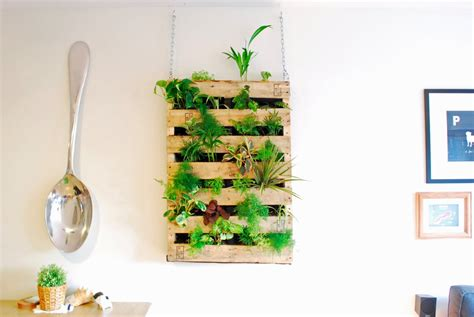 How To Make Vertical Garden Indoor Living Wall The Brew Diy Pallet Living Wall