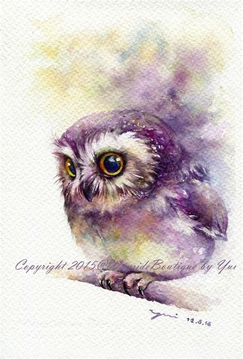 owl colors 17 best owl images on owl watercolor