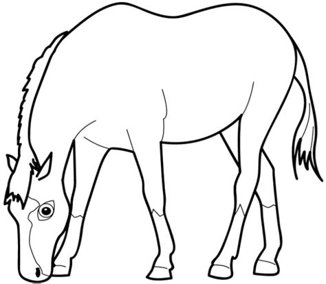 white horse coloring page horse eating grass coloring page super coloring