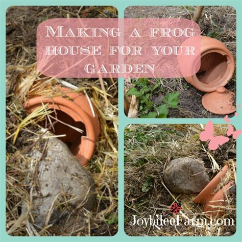 frog house making a frog house for your garden joybilee farm diy herbs gardening