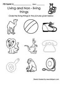 learning living thing circling activity sheet activities