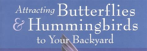 attracting butterflies and hummingbirds to your backyard attracting butterflies and hummingbirds to your back yard
