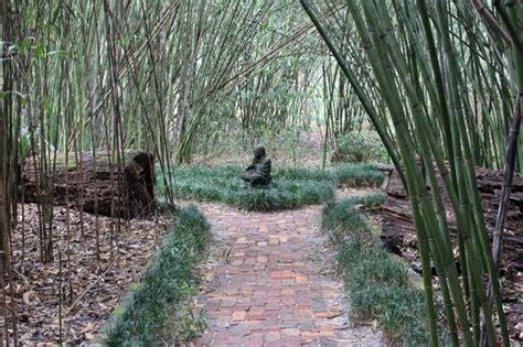 Kanapaha Botanical Garden Kanapaha Botanical Gardens Picture Of Kanapaha Botanical Gardens Gainesville Tripadvisor