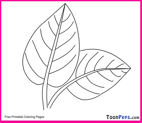green leaf coloring pages free coloring pages of the leaf is green