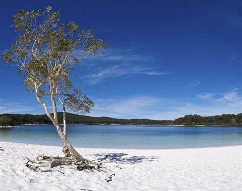 largest beach in the world discover the three largest sand islands in the world oz